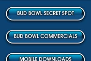 budbowl_postgame